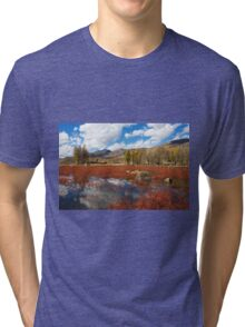 Red Grass Beach Tri-blend T-Shirt
