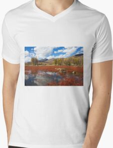 Red Grass Beach Mens V-Neck T-Shirt