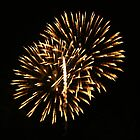 Fireworks by Berk Nash