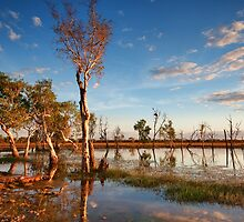 Adelaide River Billabong by Jodie Williams