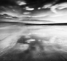 The Sky Rushes In by Andy Freer