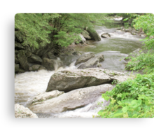 Flowing River - Tennessee Canvas Print