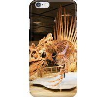 Stupendous Spinosaurus iPhone Case/Skin