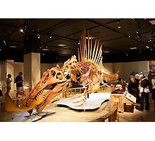 Stupendous Spinosaurus Photographic Print