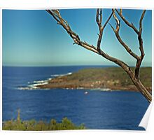 CAPE ST GEORGE LIGHTHOUSE. LOOKOUT (south) Poster