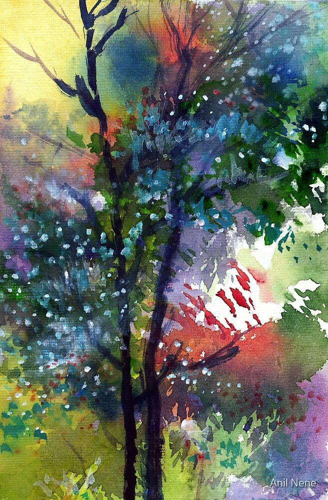 Galaxy 1 by Anil Nene