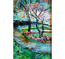 Springtime in Folsom Photographic Print