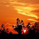 July Sunset by ccwri2010