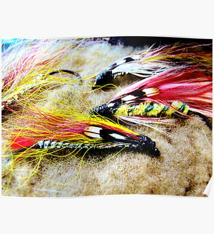 Vintage Fly Fishing Flies  Poster