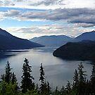 Slocan Lake, Looking North by Jann Ashworth