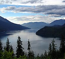 Slocan Lake, Looking North by Jann Ashworth