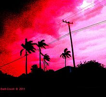 Prolific Palms by Deb  Badt-Covell