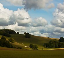 Rolling Hills by Doug McRae