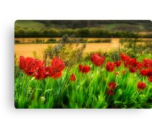 Red By The Roadside Canvas Print