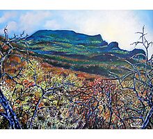 'Grandfather Mountain' Photographic Print