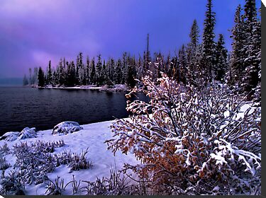 Big Lake Fresh Winters Snow by Charles & Patricia   Harkins ~ Picture Oregon