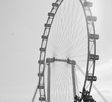 Singapore Flyer by TeresaMiddleton