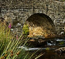 Evening light at Postbridge by moor2sea