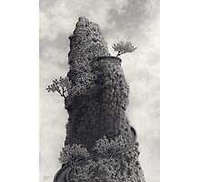 Falconer's Folly Photographic Print