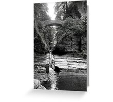 Treman Park 2 Greeting Card