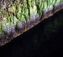 Greenish cave wall by Bernardo Trindade