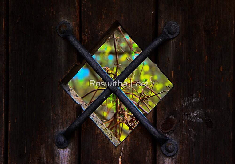 Window by RosiLorz