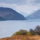 Loch Arkaig by Tim Haynes