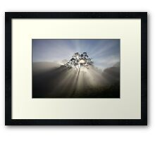 ~ *Sunburst* ~ Framed Print