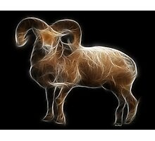 Aries - The Zodiac by Liane Pinel Photographic Print