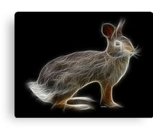 Rabbit - Chinese Zodiac by Liane Pinel Canvas Print