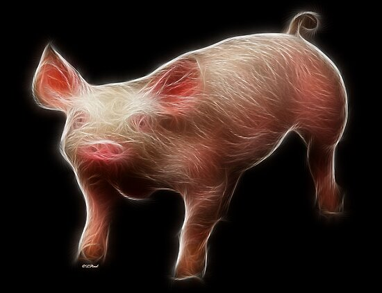 Pig - Chinese Zodiac by Liane Pinel by Liane Pinel