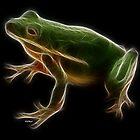 Medicine Wheel Totem Animals by Liane Pinel- Frog by Liane Pinel