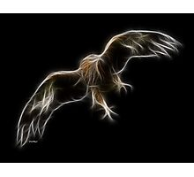 Medicine Wheel Totem Animals by Liane Pinel- Golden Eagle Photographic Print