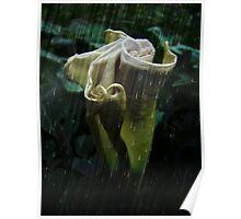 Rain on Me ~ Poster
