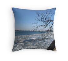 Freezing-  through the trees Throw Pillow