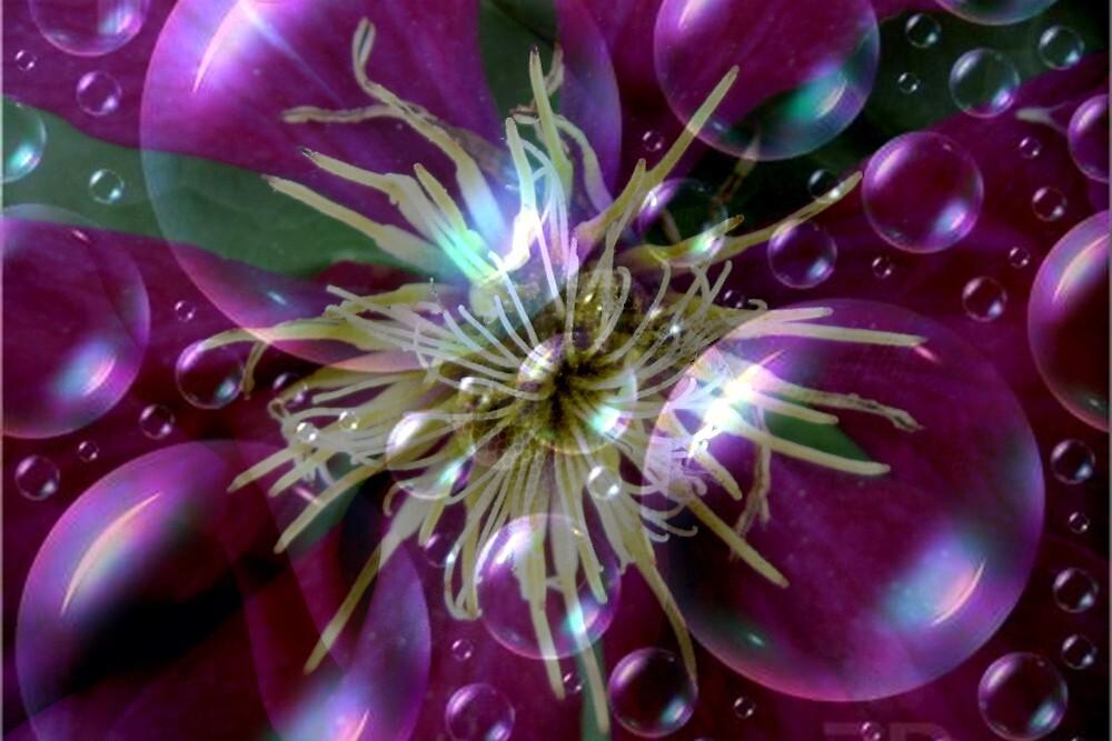 Bubbly Clematis by Debbie Robbins