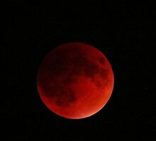 Blood Moon Eclipse by shutterbug2010