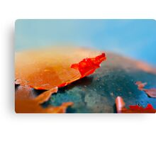 The red flake. Canvas Print