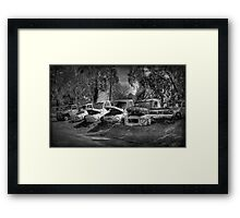 Past Their Use Buy Date #2 Framed Print
