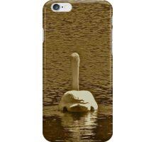 Swan Path iPhone Case/Skin