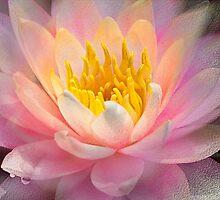 Inner Glowing by Marilyn Cornwell