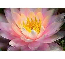 Inner Glowing Photographic Print