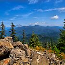 Mt. Jefferson by Charles & Patricia   Harkins ~ Picture Oregon