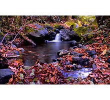 Fall at the Calapooya Photographic Print