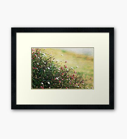 Say it with Flowers Framed Print