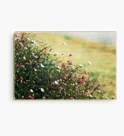 Say it with Flowers Canvas Print