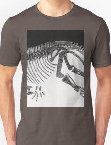 Cool Styracosaurus T-Shirt