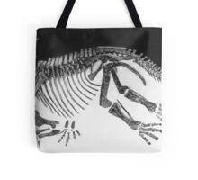 Cool Styracosaurus Tote Bag