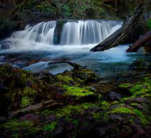 Fall Creek Falls by Charles & Patricia   Harkins ~ Picture Oregon