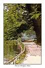 Bois De Boulogne, Paris by prbimages